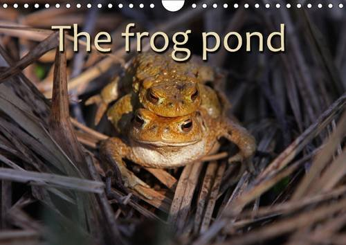 The Frog Pond / UK-Version 2017: Toads and Frogs (Calvendo Animals)
