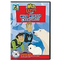 Wild Kratts: Wild Winter Creatures [DVD] [Import]