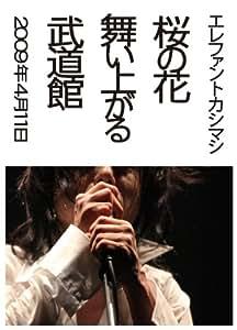 桜の花舞い上がる武道館(初回限定盤) [DVD]