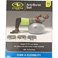 Exercise/Fitness/Work Out Ball 75 cm Anti-Burst Silver with Air Pump [並行輸入品]