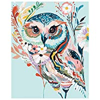 Owl Paintings Kit on Canvas for Kids Bedroom Animals Paint by Numbers for Adults Beginners