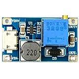 Rasbee USBポート 2A DC-DC ブーストステップアップ 転換モジュール Micro USB 2V-24V to 5V-28V 9V 12V 24V 5個 [並行輸入品]