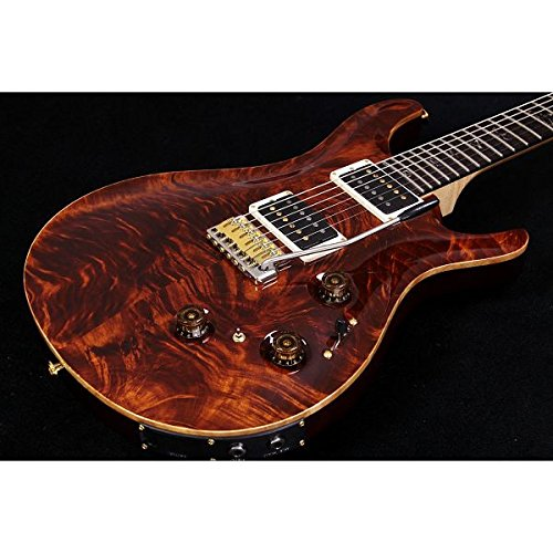 Paul Reed Smith (PRS) / Wood Library 2015 P24 Trem Tortoise Shell