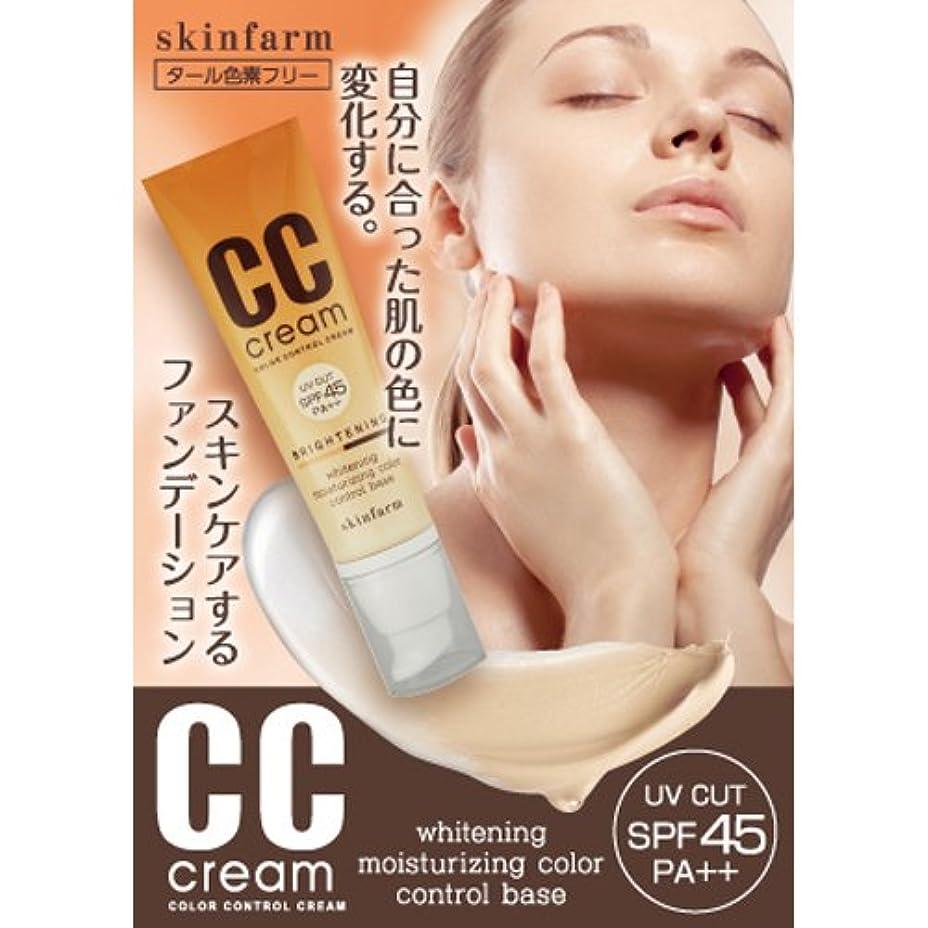 雰囲気ディスコ大邸宅SkinFarm CCクリーム