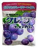 丸川製菓 チャック袋グレープフーセンガム 47g×10袋