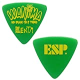 ESP Artist Pick Series WANIMA KENTA PICK