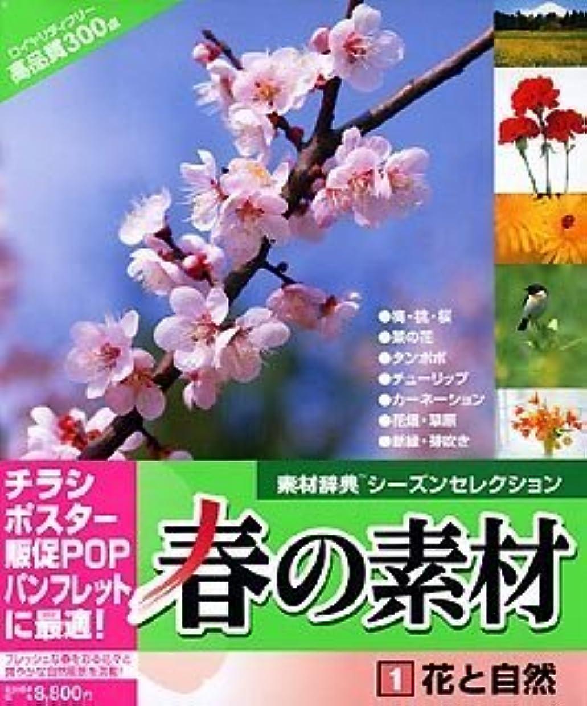 みなさん先住民夜明け春の素材 1 花と自然