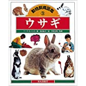 ウサギ (動物飼育図鑑)