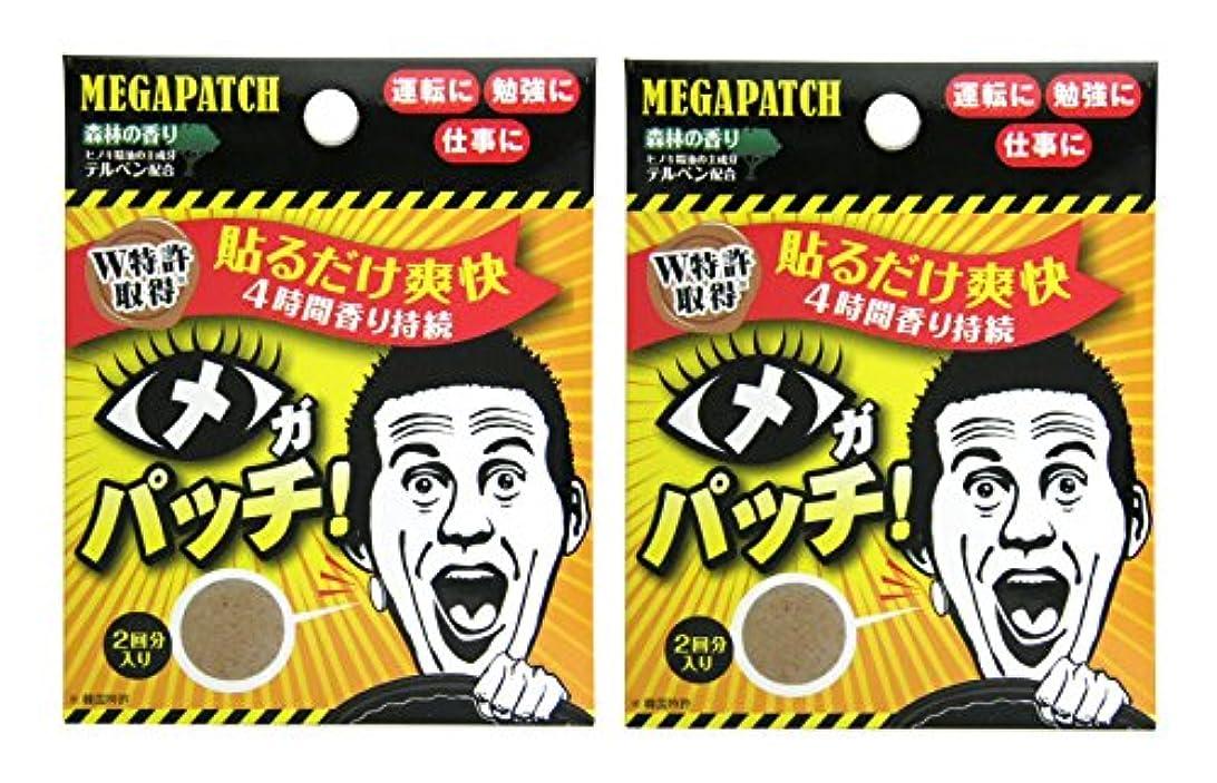 対応活気づける幻想メガパッチ 2枚セット×2個セット