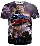 (ピゾフ)Pizoff メンズ 半袖 ネコ柄 列車 奇抜 3D プリント 面白 TシャツC7058-06-S