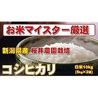 29年産 新潟県産 コシヒカリ 10kg (5kg×2) (検査一等米)桜井農園栽培