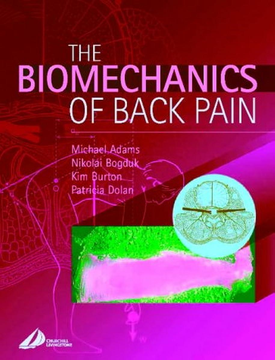 第五覚醒専門The Biomechanics of Back Pain