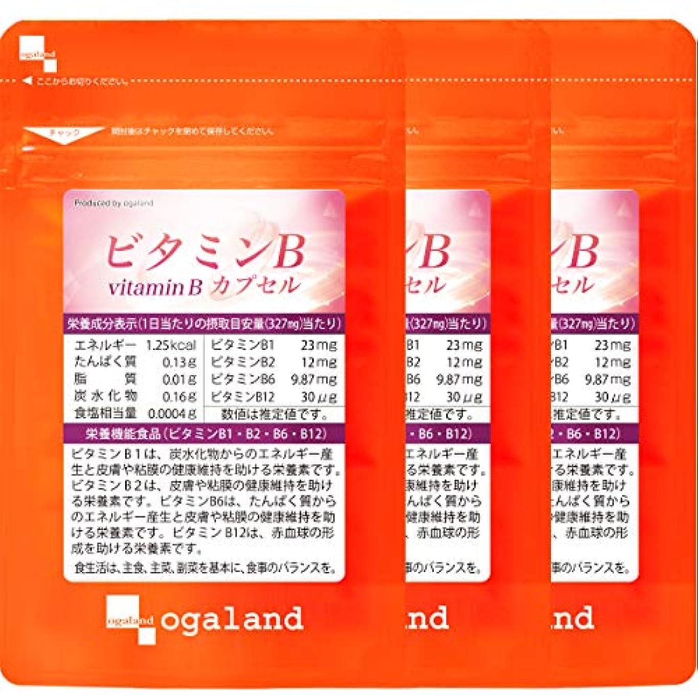 件名文房具特許ビタミンB カプセル (90カプセル/約3ヶ月分)