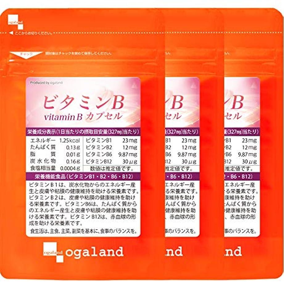 ローブ繊細添付ビタミンB カプセル (90カプセル/約3ヶ月分)