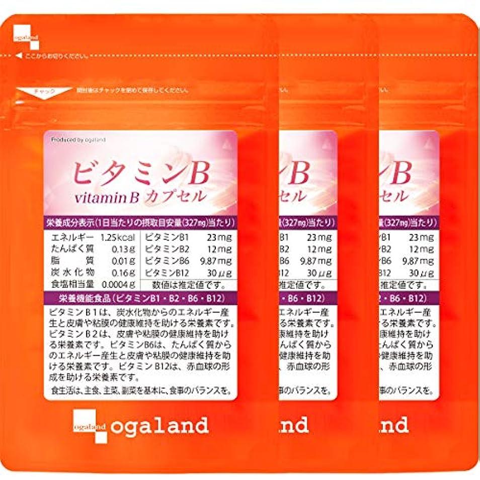 忌み嫌う放出ドットビタミンB カプセル (90カプセル/約3ヶ月分)