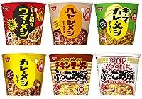 日清 カレーメシ・ハヤシメシ・ウマーメシ・ぶっこみ飯 6種類各1個入り 6個セット