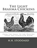 The Light Brahma Chickens (The Light Brahma Fowls): From the Shell to the Poultry Show and Exhibition Room