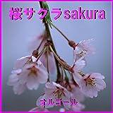 さくらんぼ Originally Performed By 大塚愛 (オルゴール)