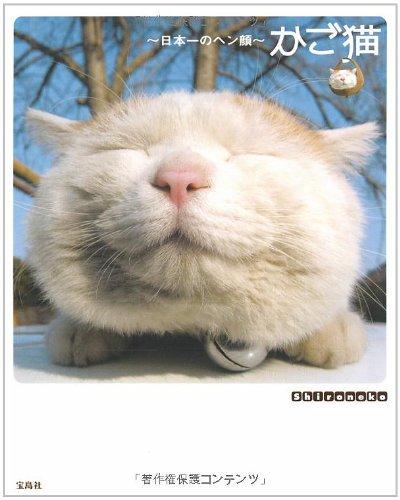 かご猫の詳細を見る