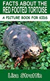 Facts About The Red Footed Tortoise (A Picture Book For Kids 95) (English Edition)