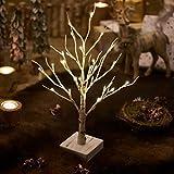 Hairui 白樺 LED ブランチツリー イルミネーション 高さ45cm 24LED 枝 ツリー インテリア シラカバのライト 卓上 飾り 北欧 おしゃれ
