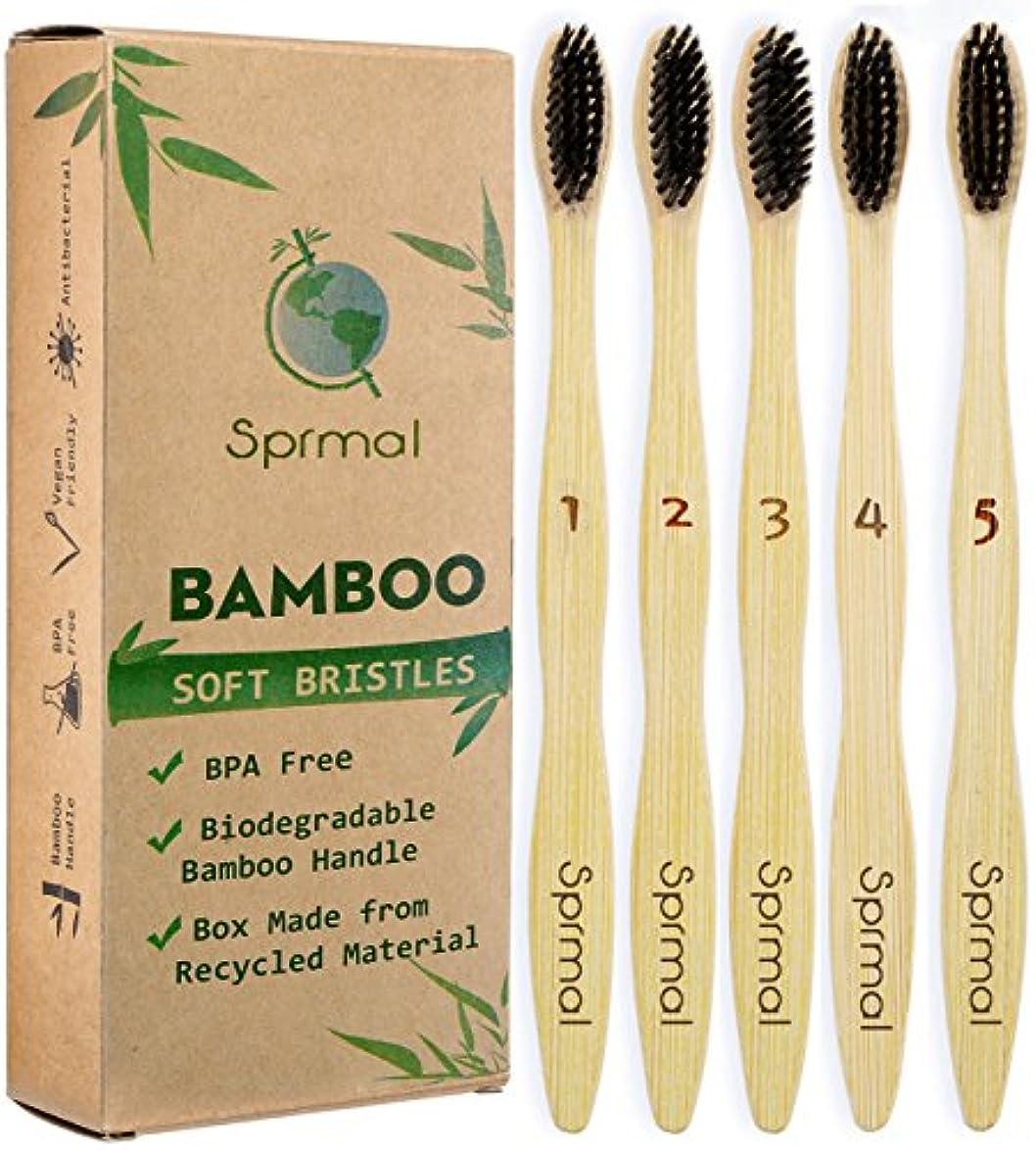 侵入する時制いたずらなSprmal Eco-Friendly Natural Bamboo Charcoal Toothbrush-Pack of 5,Individually Numbered,Zero Plastic Packaging,...