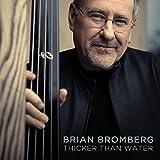 シッカー・ザン・ウォーター (Thicker Than Water / Brian Bromberg) [CD] [輸入盤] [日本語帯・解説付]