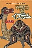 不思議のイスラム―トルコ~エジプト・モロッコの旅 (TRAJAL Books) 画像