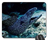Nature Landscape Gamingマウスパッド、Ocean Morayマウスパッド、Mousepad(魚マウスパッド)