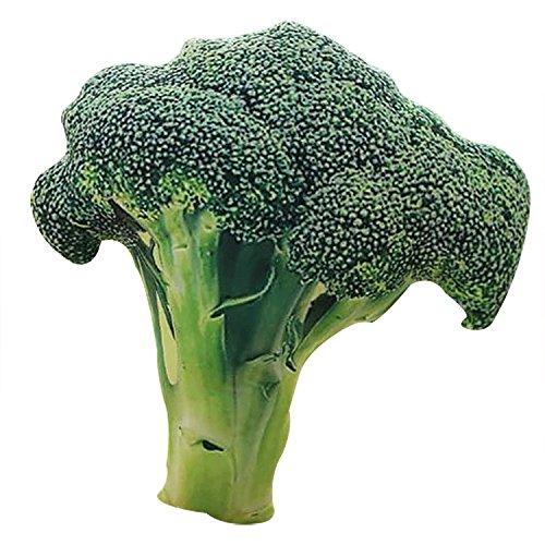 OUYOU 野菜ぬいぐるみ 抱き枕 野菜クッション ふわふわ枕 ペット 部屋 休憩 ソファー オフィス 車内 男女兼用