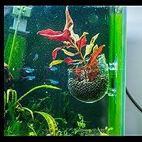 FidgetGear Aquarium Fish Tank Glass Live Plant Cup Pot Aquatic Landscape Holder Clear as picture show One size