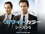 ホワイトカラー シーズン5 (字幕版)