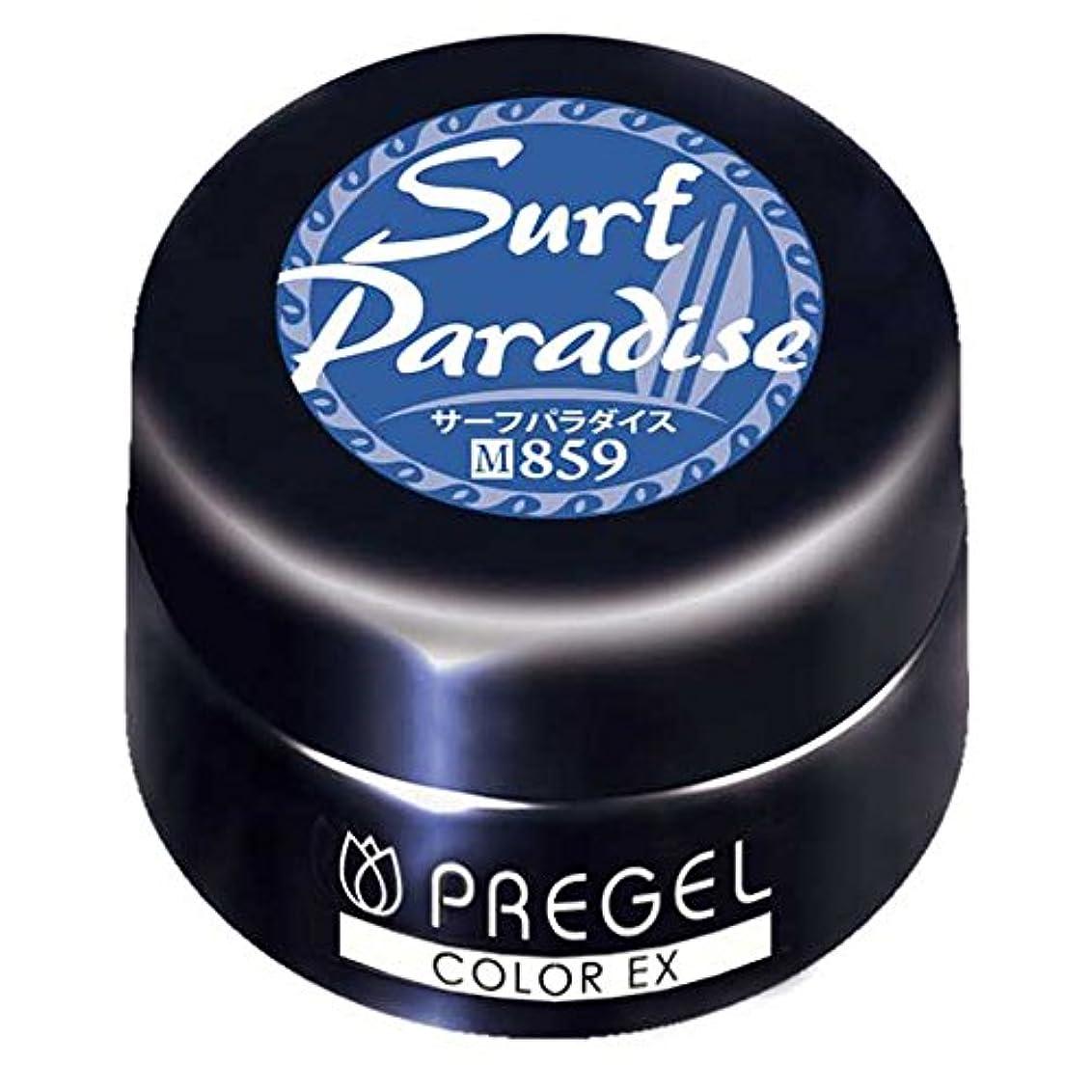 くるくるまともな入場料PRE GEL カラーEX サーフパラダイス 859 3g UV/LED対応