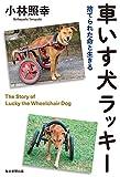 「車いす犬ラッキー 捨てられた命と生きる」販売ページヘ