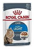 ロイヤルカナン FHN -WET ウルトラライト 猫用 85g×12個入り