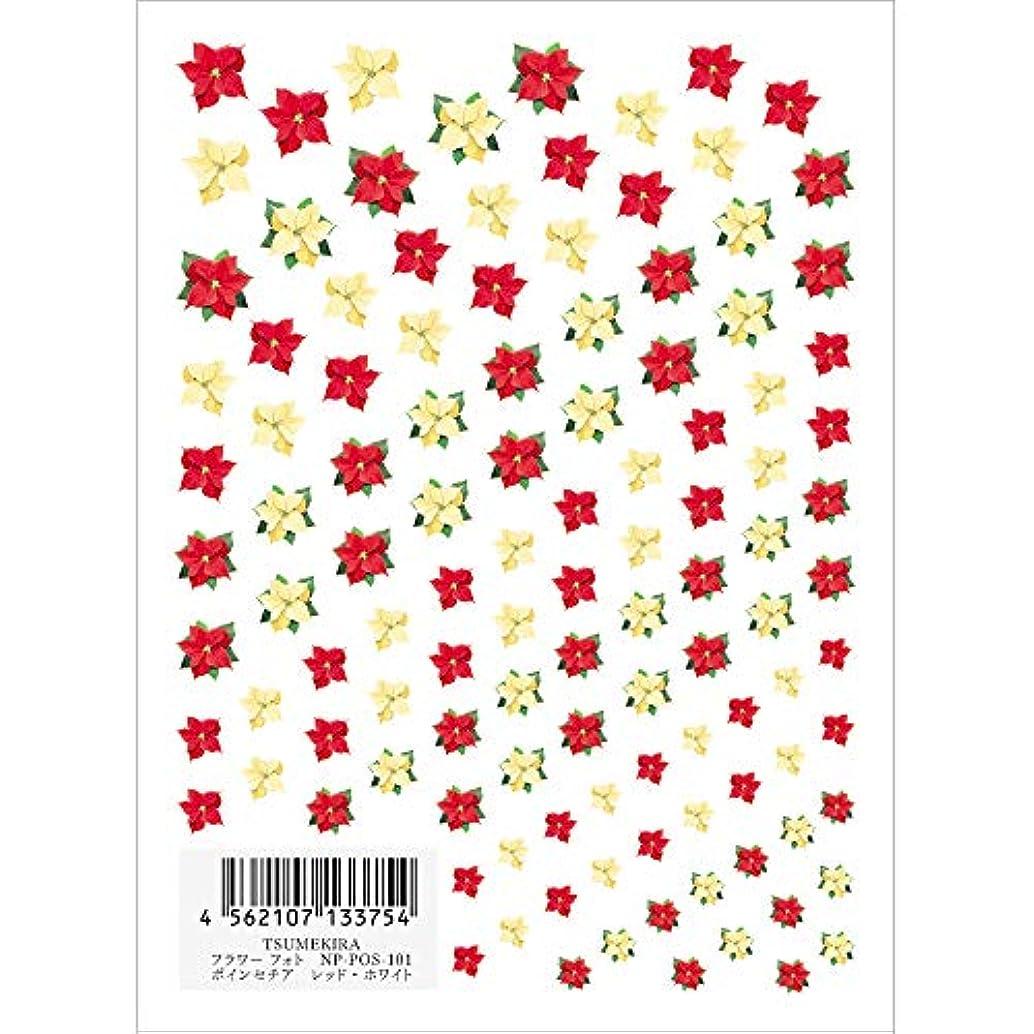 財団アブストラクト古風なツメキラ ネイル用シール フラワースタイル ポインセチア RE/WH