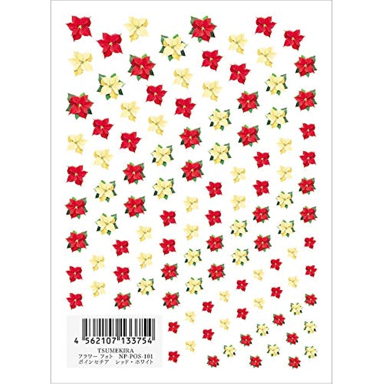 葉を集める国旗プレートツメキラ ネイル用シール フラワースタイル ポインセチア RE/WH