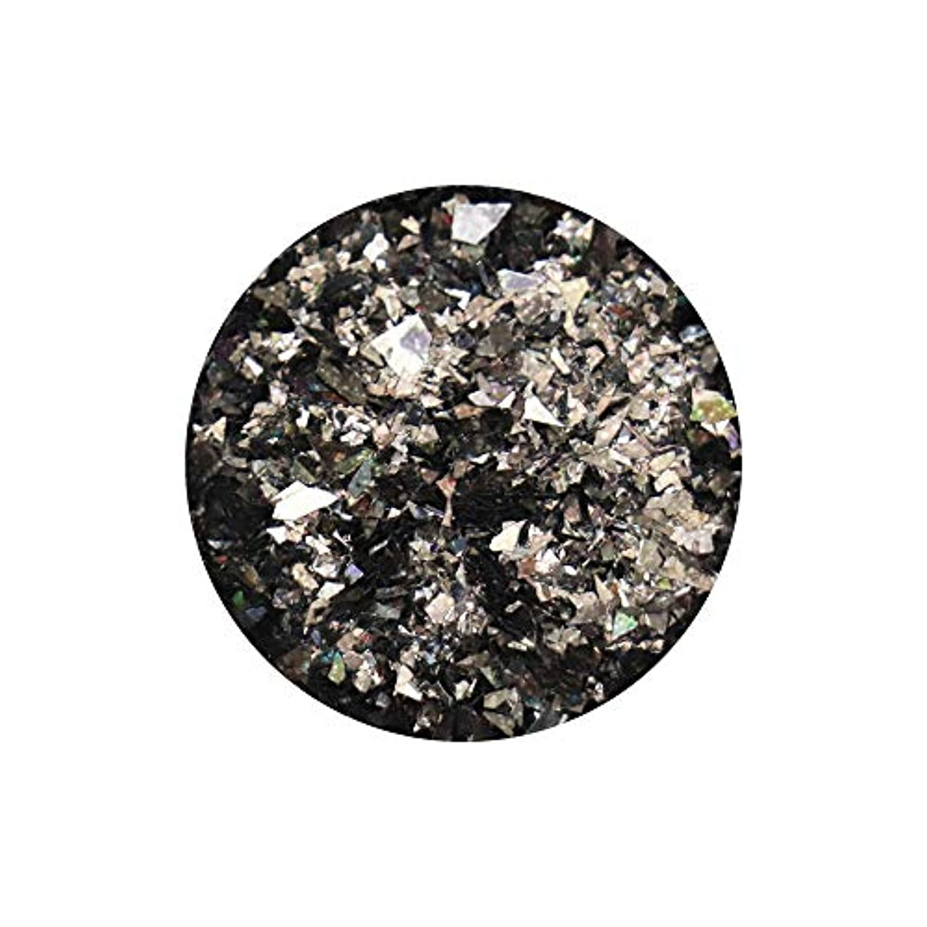 ランダムフレークホログラム 約1g ブラック ネイルアート ジェルネイル レジン ホログラム グリッター