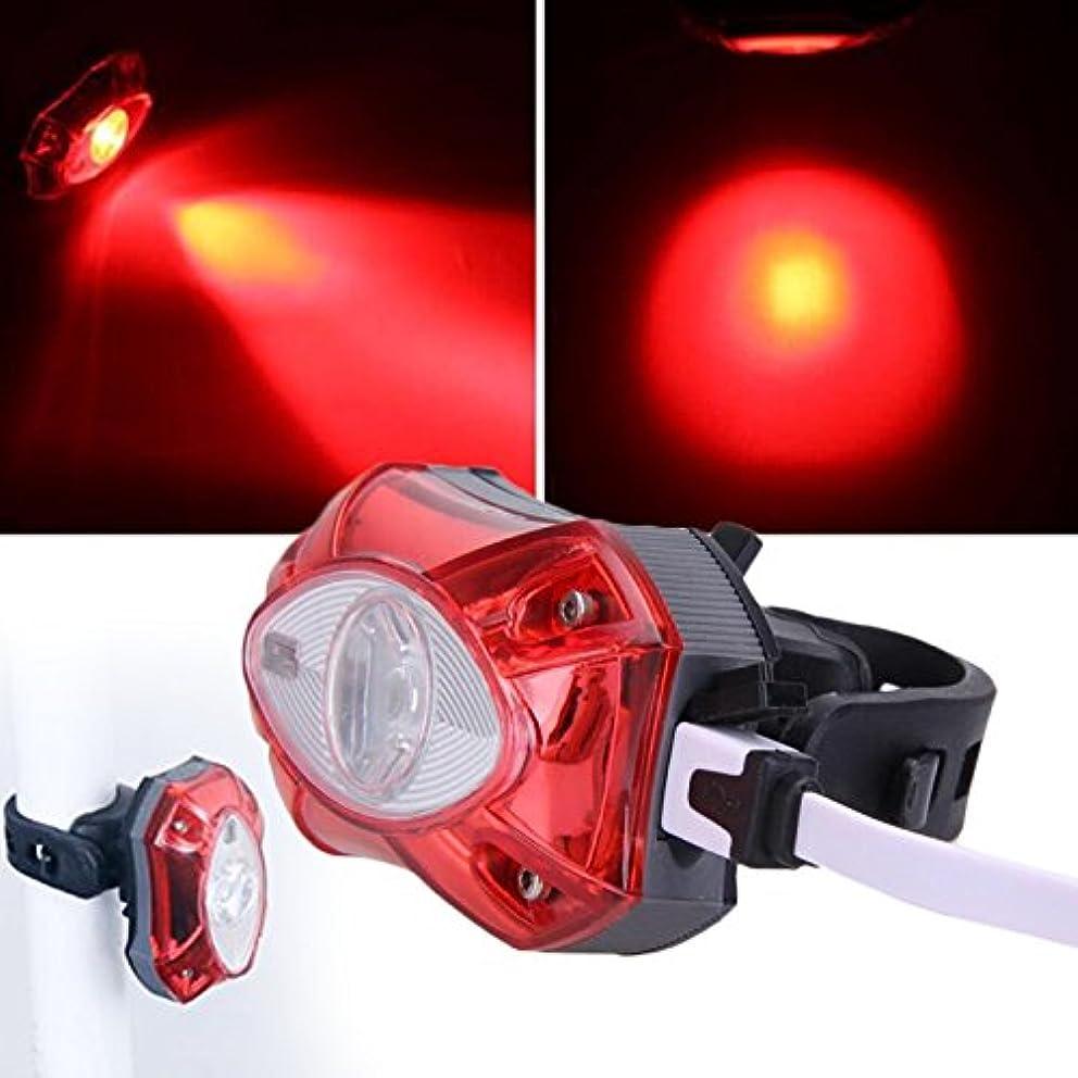 ミッション厄介な瞑想するBeautyrain 1個 USB充電自転車灯台自転車ライトMTB安全警告灯 赤い光