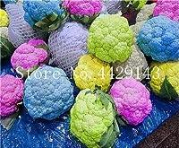 50個レアオーガニックRomanescoタワーブロッコリー盆栽、ローマのカリフラワーフラクタルヘッドBroccoflower野菜DIYホーム&ガーデン:17