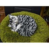 おやすみ親子猫(ムービングタイプ) SCAT-A(アメショー)