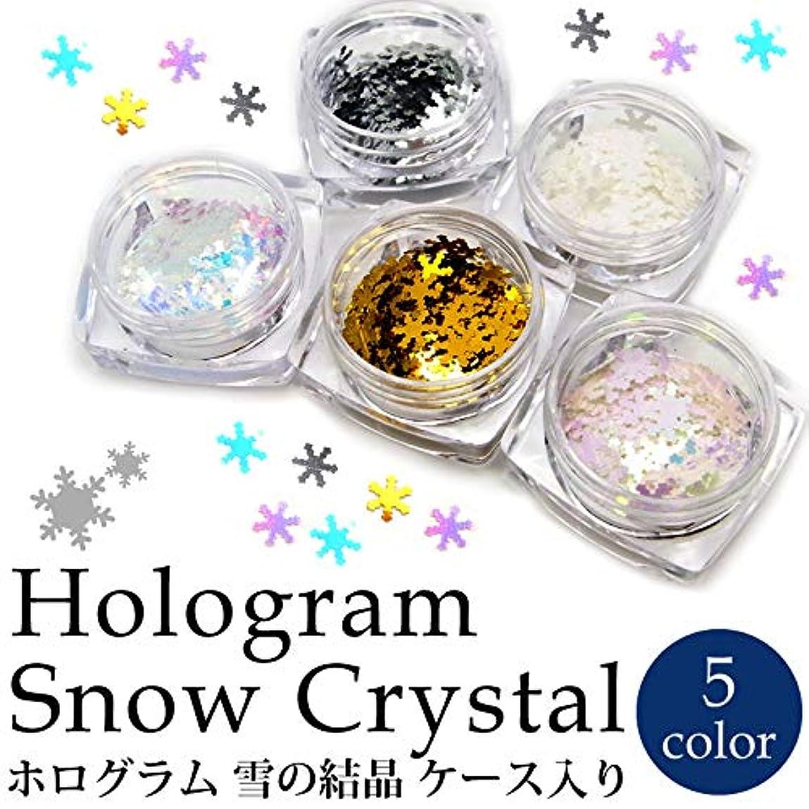 無効食物迷惑ホログラム 雪の結晶 各種 ケース入り (5.ホワイトオーロラピンク)