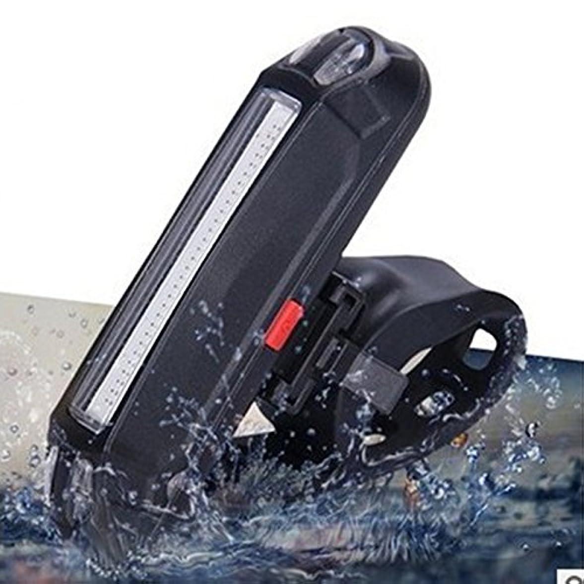 マニュアル相対サイズ無条件RaiFu テールライト 明るい 自転車 USB充電式 LEDセーフティライト 6つのモード LEDフロントリアライト レッド