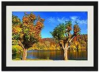 美しい秋の風景、木、森 (N040) 自然風景 壁掛け黒色木製フレーム装飾画 絵画 ポスター 壁画(30x40cm)