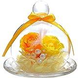 TEATSIGHT プリザーブドフラワー フラワーアレンジ ラッピング済み ガラスポット入り 2輪 (バラ イエロー×オレンジ)