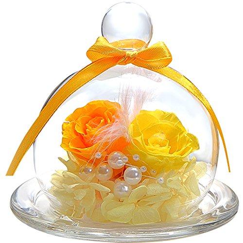 TEATSIGHT プリザーブドフラワー フラワーアレンジ ラッピング済み ガラスポット入り 2輪 (バラ イエロー×...