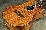 Washburn / WCGM55K Natural ワッシュバーン アコースティックギター