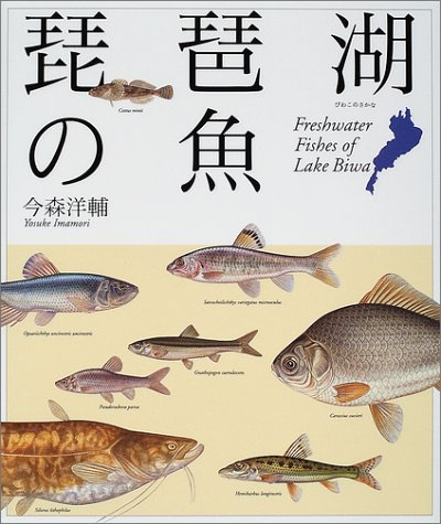 琵琶湖の魚の詳細を見る