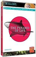 Biology Basics: Pyramid of Life [DVD] [Import]
