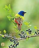 世界で一番美しい鳥図鑑: 大空を舞い、 木々に水辺に佇む;オオゾラヲマイ キギニミズベニタタズム